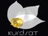 KURDSAT TV بث مباشر قناة كردسات الفضائية